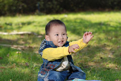 Cute boy sitting on the lawn Royalty Free Stock Photography