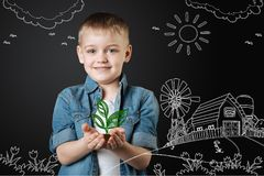 Cute boy smiling while holding a tiny plant in his hands. Planting seeds. Cheerful little boy standing in the yard behind his house and feeling glad while stock images