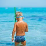 Cute boy snorkelling Royalty Free Stock Photo