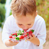 Cute boy tasting yummy fresh strawberries in sugar powder Royalty Free Stock Photography