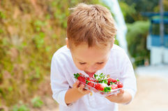 Cute boy tasting yummy fresh strawberries in sugar powder Stock Photo