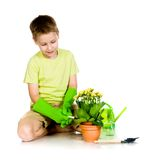 Cute boy transplanted the plant Stock Photo