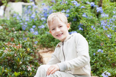 Cute boy at the tree Royalty Free Stock Photos