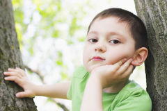 Cute boy between trees Royalty Free Stock Photography