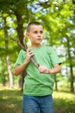 Cute boy walking through the forest Royalty Free Stock Photography