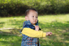 Cute boy walking in the park Royalty Free Stock Image