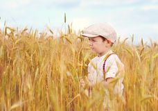 Cute boy walking the wheat field Royalty Free Stock Photos