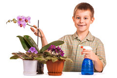 Cute boy is watering the flowers Stock Photo
