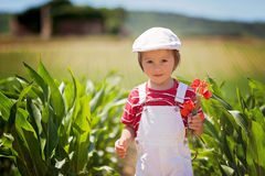 Cute boy with white hat and overalls, holding poppies, walking i Royalty Free Stock Photography