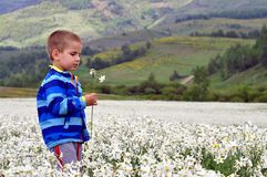 Cute Boy between of the white narcissus field. Emotion, fashion stock image