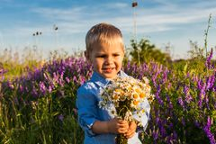 Cute boy with wildflowers stock image