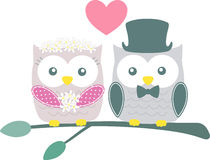 Cute bride and groom owls Royalty Free Stock Image
