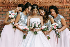 Cute bridesmaids in the stylish dresses and a bride Stock Image
