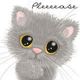 Cute british kitten stock illustration