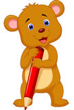 Cute brown bear cartoon holding red pencil Royalty Free Stock Image