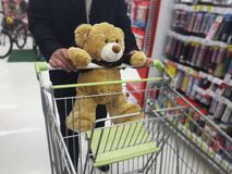Cute brown bear catching shopping cart with man with background Royalty Free Stock Photos