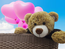 Cute brown bear doll gift in basket with pink balloon and blue s Stock Images