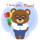 A cute brown bear holds three tulips. Congratulations on your mother`s day, in the style of cartoons. Stock Image