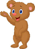Cute brown bear presenting Royalty Free Stock Images