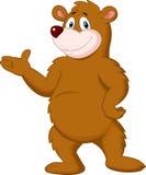 Cute brown bear presenting Stock Photos