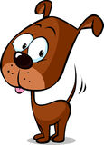 Cute brown dog cartoon standing isolated on white background - vector Royalty Free Stock Images