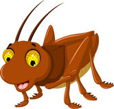 Cute brown grasshopper cartoon Royalty Free Stock Photography