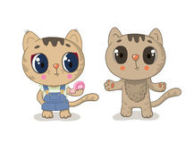 Cute brown kitty girl on a white background Royalty Free Stock Images