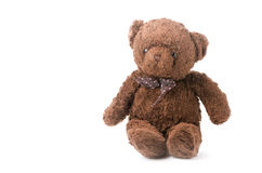 Cute brown Teddy Bear isolated Royalty Free Stock Photo