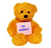 Im Sorry teddy bear. Cute brown teddy bear on isolated white background with a message saying Im sorry Stock Images