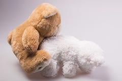 A cute brown teddy bear Stock Photos