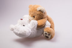 A cute brown teddy bear Royalty Free Stock Photo