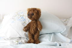 Cute brown teddy bear resting on the bed Stock Photography