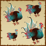 Cute brown turkey with big blue tail Stock Photo