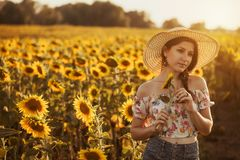 Cute brunette in a blossoming sunflower field royalty free stock photography
