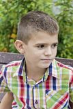 Cute brunette boy eleven years old. In summer background royalty free stock images