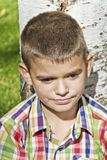 Cute brunette boy eleven years old. In tree background royalty free stock photography