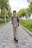 Cute brunette boy eleven years old. Walking in summer royalty free stock photography