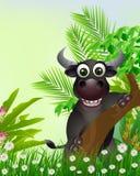 Cute buffalo cartoon smiling Stock Photos