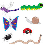 Cute Bugs Stock Photography