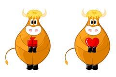 Cute bull. Shy cute bull give a present Stock Photos
