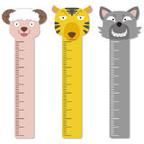 Cute bumper children meter wall. Stock Images