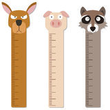 Cute bumper children meter wall. Stock Image