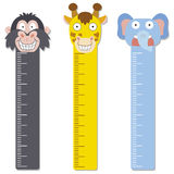 Cute bumper children meter wall. Royalty Free Stock Image