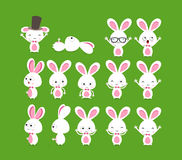 Cute bunnies Stock Images