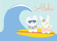 Cute bunnies surfing Royalty Free Stock Photos