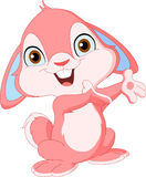 Cute bunny. A very cute pink bunny vector illustration