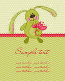Cute Bunny Card Stock Photography