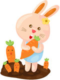 Cute bunny with carrot Stock Images