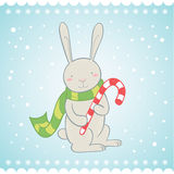 Cute bunny Christmas greeting card Royalty Free Stock Photo