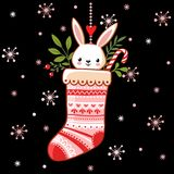 Cute bunny in a Christmas sock. Royalty Free Stock Images